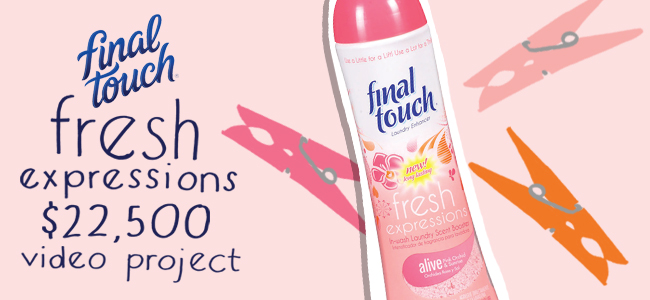 Final Touch Fresh Expressions In-wash Scent Booster Video Project